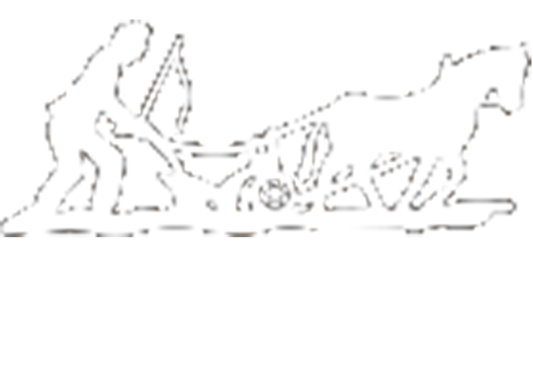 Pflugerhof Tannheim